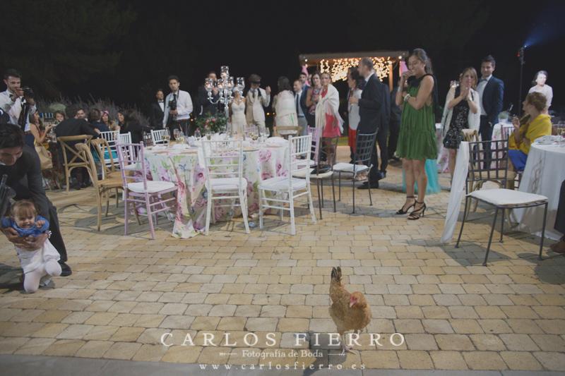 fotograf boda lleida barcelona fotografo